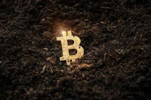 突发行情!比特币再创历史新高冲破62000美元 加密货币市场最大的新闻之一来了?